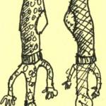 Socke Links & Socke Rechts